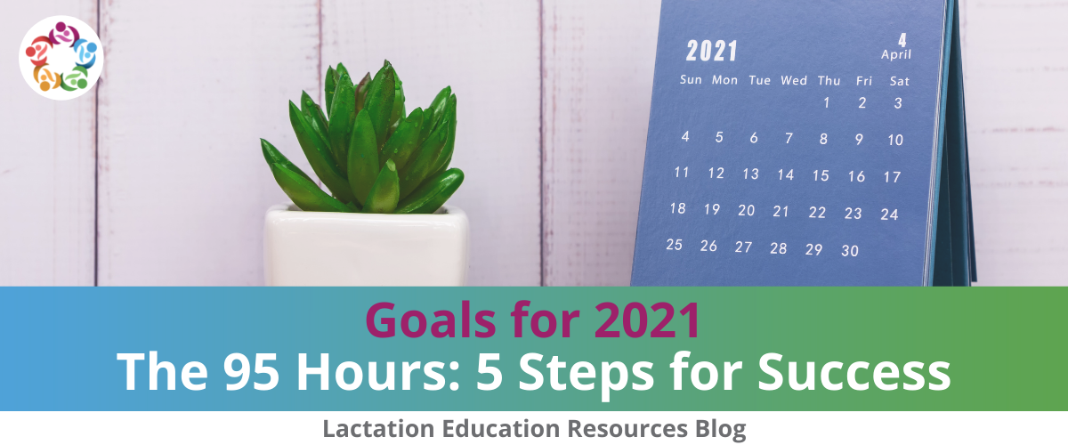 Goals for 2021 The 95 Hours: 5 Steps for Success