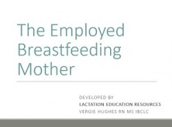 Employed Breastfeeding Mother
