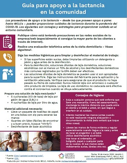 Fact Sheet Home Visit Spanish