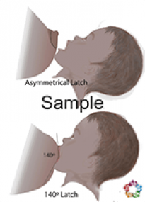 Latch Sample
